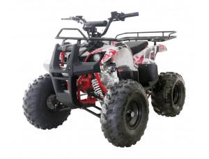Квадроцикл WELS THUNDER 125 Basic
